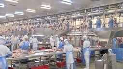 MS tem frigorífico habilitado para exportar carne para a Tailândia