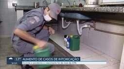 Casos de intoxicação em casa aumentam durante quarentena