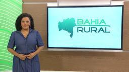 Bahia Rural - 25/10/2020 - Bloco 1