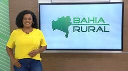 Bahia Rural - 28/02/2021 - Bloco 3