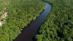 Grande Reserva Mata Atlântica (parte 2)
