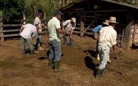 Agricultores pagam ajuda que recebem com serviço e não com dinheiro
