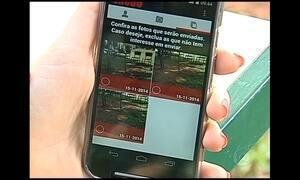Aplicativo ajuda a diminuir morte de animais silvestres no interior de São Paulo