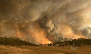 Incêndio devasta florestas na Califórnia, nos EUA