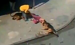 Aprenda a se defender de um ataque de cachorros ferozes