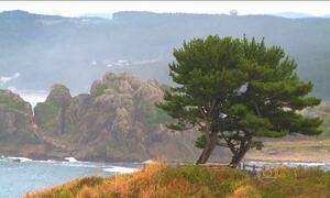 Cidade japonesa se reergue quatro anos após tsunami