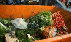 Família brasileira joga fora, em média, um quilo de alimentos por dia