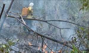 Grupo de madeireiros pode estar por trás de atentado e incêndio no MA