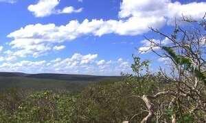Tribo que vive no Chaco paraguaio nunca fez contato com a civilização