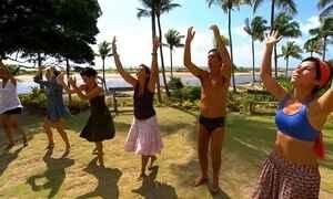 Comunidade escondida na Bahia atrai quem quer mudar estilo de vida