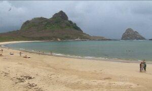 Praia onde tubarão mordeu turista é liberada em Fernando de Noronha