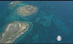 Samarco diz que água de Abrolhos (BA) não foi contaminada por lama