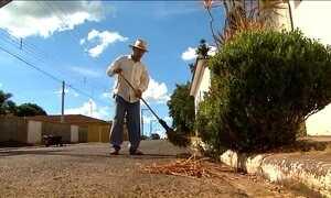 Três cidades do interior paulista dão exemplo de combate ao Aedes aegypti