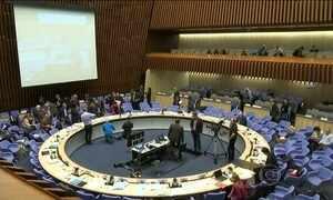 Organização Mundial da Saúde discute ações contra zika vírus