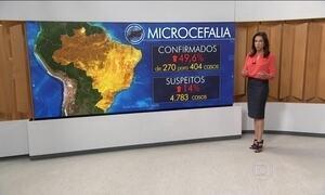 Casos confirmados de microcefalia sobem quase 50% em uma semana