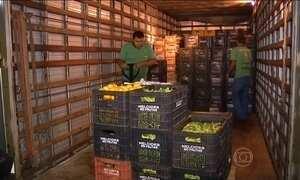 Frete cada vez mais caro pesa na inflação dos alimentos no Brasil