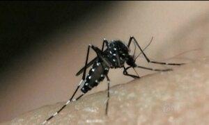 Fiocruz detecta vírus da zika ativo na urina e na saliva de pacientes