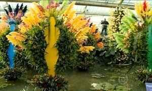 Brasil inspira tema de festival de flores em jardim botânico de Londres