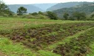 Expedição Campo: agroecologia
