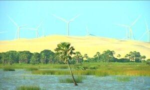 Ambientalistas protestam contra usina eólica em parque no Maranhão