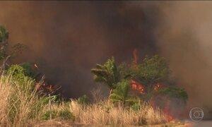 Maranhão entra em estado de emergência por queimadas