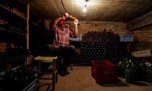 Jovem faz sucesso produzindo vinho na garagem de casa