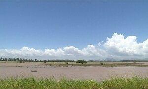 Chuva inunda as pastagens, mas beneficia lavouras de café no Espírito Santo