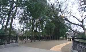 Parque próximo a Tóquio preserva costumes da cultura japonesa