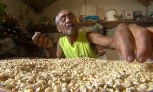 Embrapa apoia banco de sementes no RJ