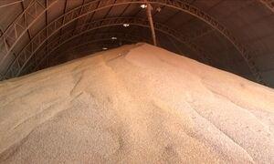 Armazenagem da safra preocupa agricultores em várias regiões do país