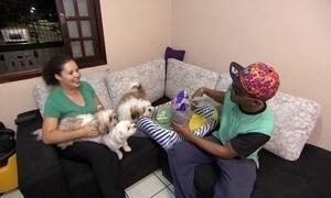 Shopping virtual vende produtos exclusivos para animais de estimação