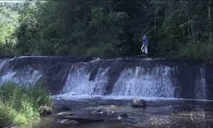 Produtores rurais do sul da Bahia recuperam nascentes de rios