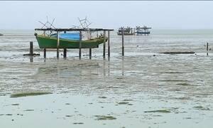 Maré seca atinge litoral de São Paulo até o Rio Grande do Sul