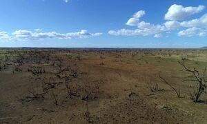 Seca castiga São Francisco, o maior e dos mais importantes rios do Brasil