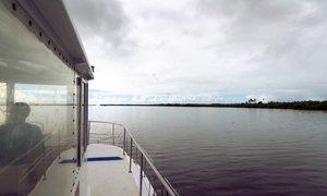 Impacto em Abrolhos pode se tornar crônico, alerta especialista
