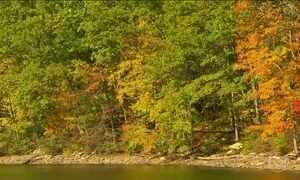 Convidamos você a viajar pelas cores do outono americano