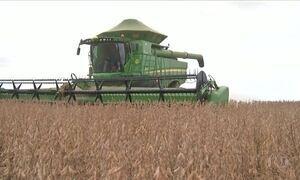 Colheita da soja se espalha pelo país