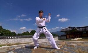 Criado por guerreiros, Taekwondo é símbolo cultural da Coreia do Sul