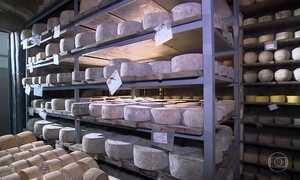 SPA do queijo: lugar perfeito para as bactérias garantirem sabor delicioso