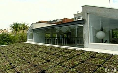 Empresas começam a adotar conceito do telhado verde