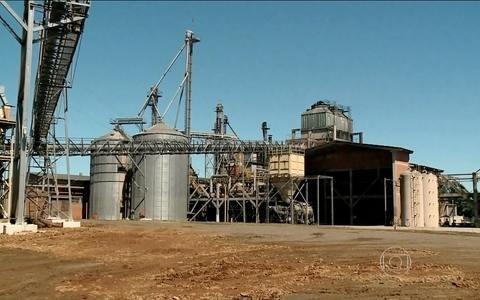 Biomassa já responde por quase 10% da matriz energética do Brasil