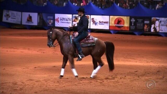 Rodrigo Minotauro participa de prova de rédeas de cavalos em Avaré