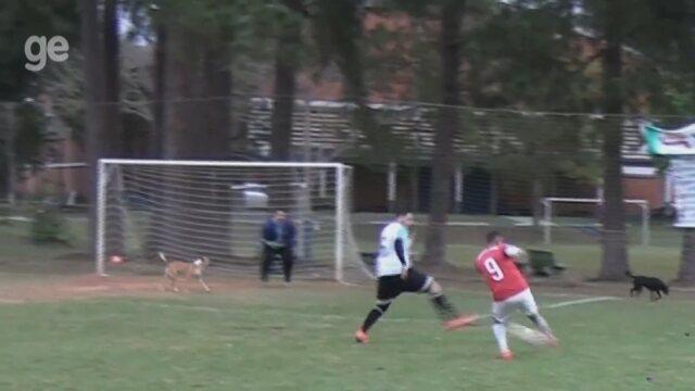 """Cachorro invade campo, faz """"defesa milagrosa"""" e decide título no interior de SP; vídeo"""