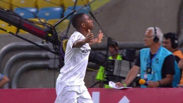 http://globotv.globo.com/sportv/futebol-nacional/v/os-gols-de-botafogo-2-x-3-santos-pelas-quartas-de-final-da-copa-do-brasil-2014/3667592/