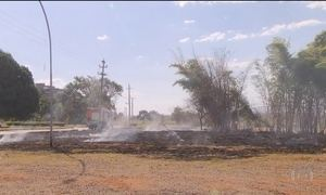 Tempo seco aumenta o número de queimadas no Centro-Oeste