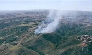 Bombeiros registram 781 incêndios florestais no DF