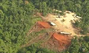 Desmatamento na Amazônia dobra em junho