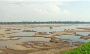Quinze municípios do Amazonas estão em alerta por causa da estiagem