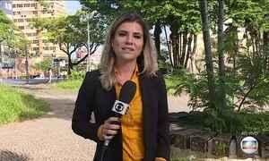 MG enfrenta aumento no número de casos suspeitos de febre amarela