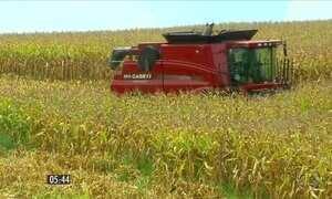 Safra recorde de grãos estimula setor de máquinas agrícolas no RS